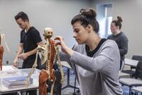 Northwestern Health Sciences University students working in an anatomy class