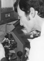 Member of the Northwestern College of Chiropractic community looking through a microscope
