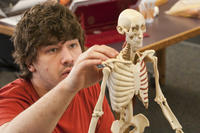 Student in anatomy lab