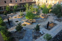 Northwestern Health Sciences University's Healing garden