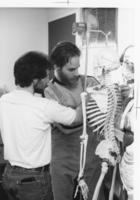 Chiropractic students working with skeleton