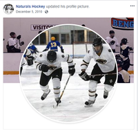 Northwestern Health Sciences University's Naturals Hockey Team
